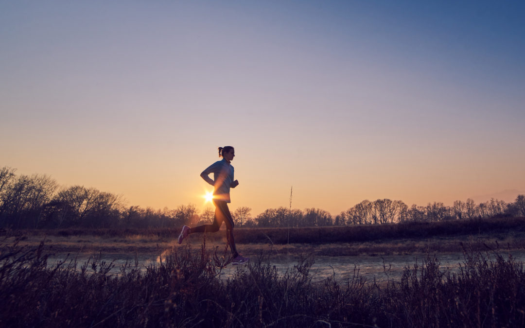 Lesson Two: The Business Fitness Plateau